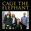Bild Cage The Elephant