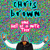 Chris Brown: One Hell Of A Nite Tour