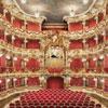 Bild Festkonzert im Cuvilliés-Theater