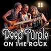 Deep Purple - Live in Concert 2016