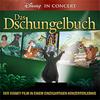 Bild Disney in Concert: Das Dschungelbuch - mit Enrico De Pieri und Lars Redlich