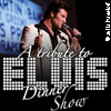 A Tribute To Elvis Dinner Show - Logo