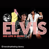 Oliver Steinhoff: Elvis - His Life In Music