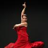 Bild Flamenco - Feuer Andalusiens - Dinnershow