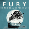 Fury in the Slaughterhouse: Little Big World Tour - Live&Acoustic