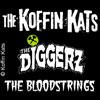 Bild Koffin Kats + Support