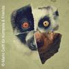 Bild Lemur