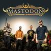 Bild Mastodon