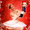 Konzertkarten Nussknacker  -  Klassisches Russisches Ballett aus Moskau