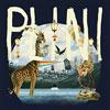 Bild Plini