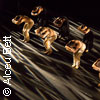Bild Sao Paolo Dance Company