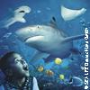 Bild SEA LIFE® Speyer - Tageskarte
