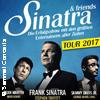 Bild Sinatra & Friends