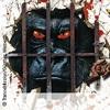 Bild Trancemission + Sensles + Storm: Monkey meets Paranoia