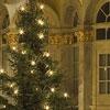Johann Sebastian Bach: Weihnachtsoratorium (Kantaten I – VI) - Frauenkirche Dresden