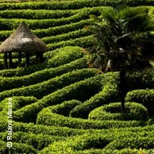 Gartenträume - Die schönsten Gärten und Parks der Welt