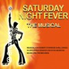 Saturday Night Fever  -  Das Musical Karten