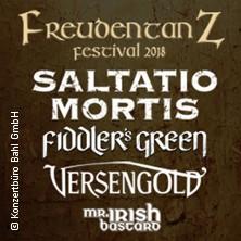 Freudentanz Festival 2018 mit Saltatio Mortis, Fiddler's Green, Versengold, Mr. Irish Bastard in GIESSEN * Kloster Schiffenberg,