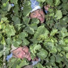 Spitz & Stumpf: Baure-Cop