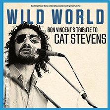 Wild World a tribute to Cat Stevens