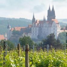 Sommerklassik für Weingenießer -Open Air Konzert