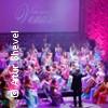 Bild Venus Orchestra Konzertgala