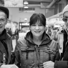 Ulla Meinecke & Band - Und danke für den Fisch!