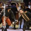 Zorro  -  Das Musical   Stadttheater Bremerhaven Karten