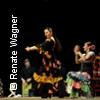 Bild Sabor Flamenco: Die Leidenschaft eines Tanzes
