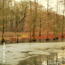 Karten für Spaziergang durch den Rombergpark in Dortmund in Dortmund
