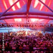 4. Philharmonic Rock am See mit der Vogtland Philharmonie & bekannten Solisten