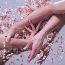 Open Grounds - Tanz |  Dresden Frankfurt Dance Company Tickets
