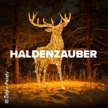 HALDENZAUBER - Der große Lichterpark - 26.11.18 bis 26.11.18 in HÜCKELHOVEN * Millicher Halde,