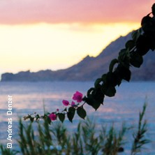 Das große Engelsaal-Sommerfest - Wenn die Rosen erblühen in Malaga