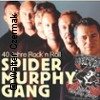 Bild Spider Murphy Gang - 40 Jahre Rock'n Roll | Open Air