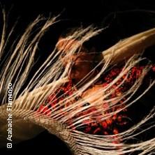 Azabache Flamenco - 25- Jähriges Jubiläum