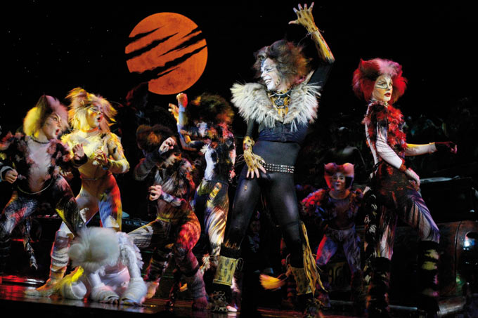 CATS das Musical - Cats das Musical 6