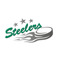 Bietigheim Steelers - Tickets