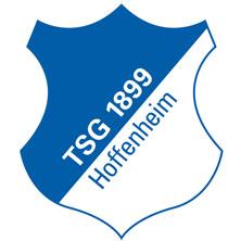 TSG 1899 Hoffenheim: Saison 2018/2019
