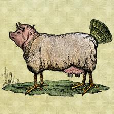 Kabarett Erfurter Puffbohne: Eierlegende Wollmilchsau