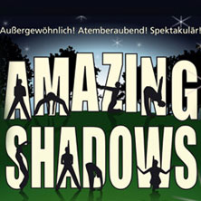 Amazing Shadows performed by The Silhouettes (USA)