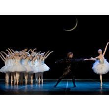 Schwanensee - Russisches Staatstheater für Oper und Ballett Astrachan