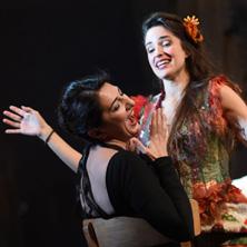 Ariadne auf Naxos - Deutsche Oper am Rhein in DÜSSELDORF * Opernhaus Düsseldorf,