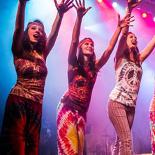 Here Comes The Sun Again - Flower Power In Concert