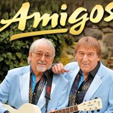 Amigos - Wie ein Feuerwerk - Tour 2017