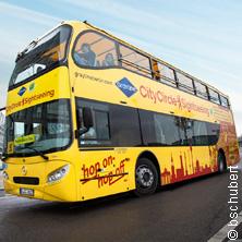 Berlin Stadtrundfahrt Yellow Tour(48h)