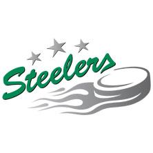 Bietigheim Steelers: Saison 2017/2018 in BIETIGHEIM-BISSINGEN * EgeTrans Arena,