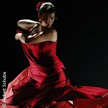 Flamenco Festival - Flamenco Vivo