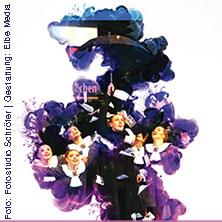 20 Jahre Tanzwochen in Riesa - IDO Showdance - WM 2016