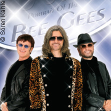 Jive Talking - Bee Gees Portrait